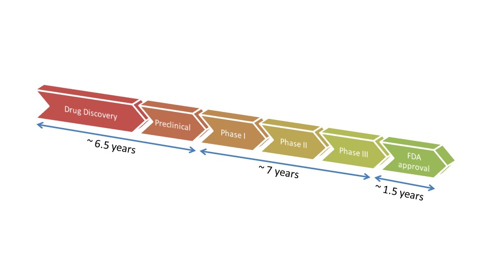 The drug discovery process and its timeline