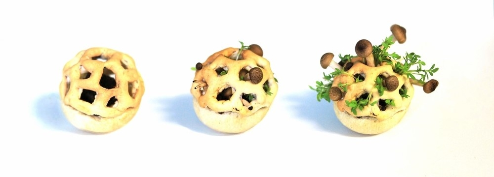 Chloé Rutzerveld's Edible Growth, a biscuit matrix that contains seeds, spores, and yeast that grow over a period of days to reveal a weird yet nutritious snack.