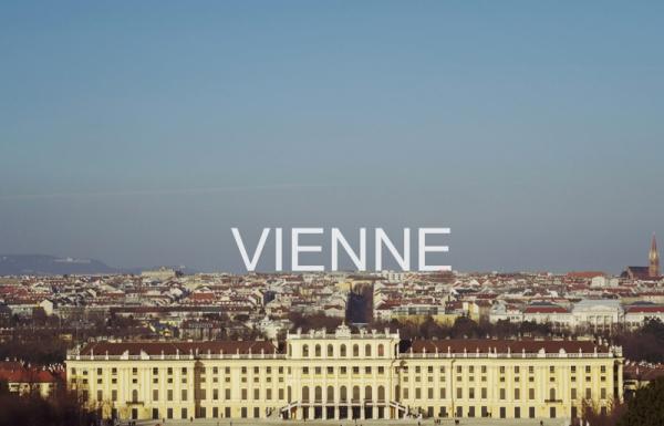 Vienne-Wonderluhsters