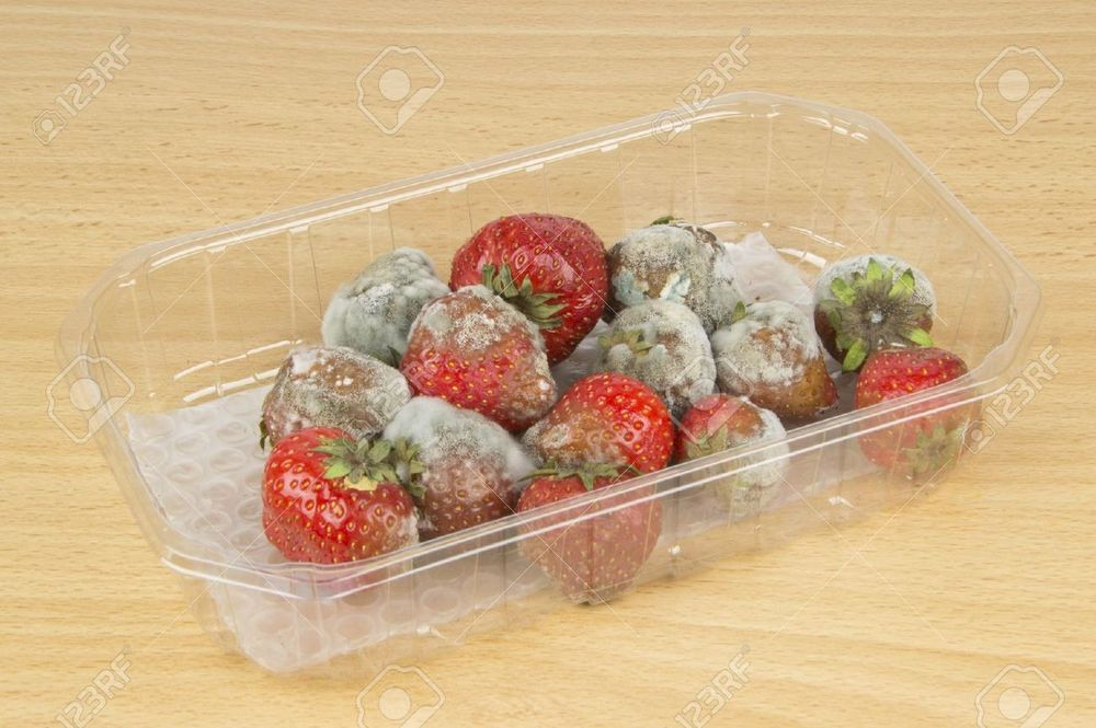 16801263-A-packet-of-rotten-mouldy-strawberries-on-a-table-top-Stock-Photo.jpg