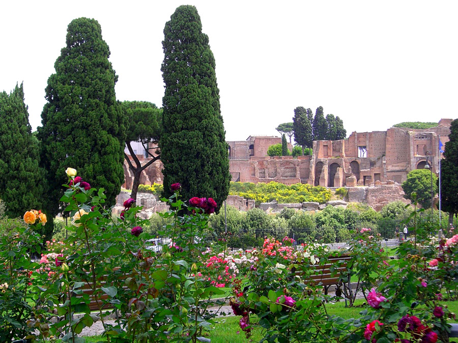 2-Rose-public-garden-of-Rome-Purple-Home-News.jpg