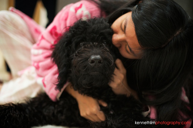 Hong Kong wedding night before bride kissing dog
