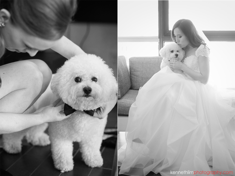 Atlanta wedding W Atlanta Hotel big day photography puppy ringbearer with bride in gown