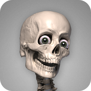 Skelly App Logo