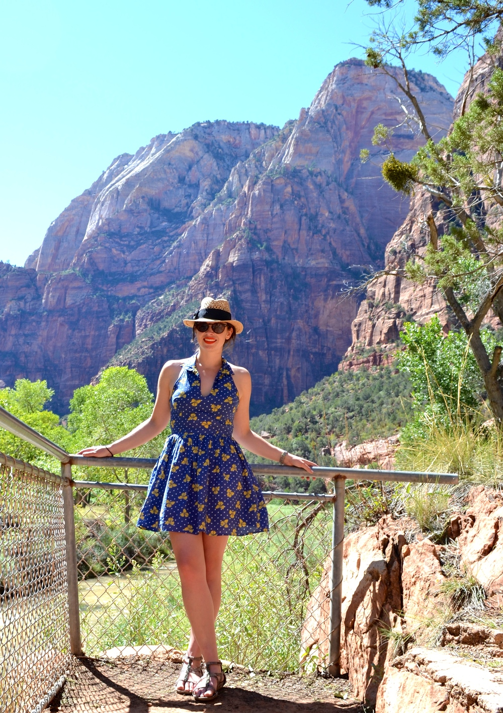 zion-national-park-overlook