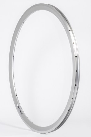 Velocity's Chukker.  40 or 48 hole disc rim.