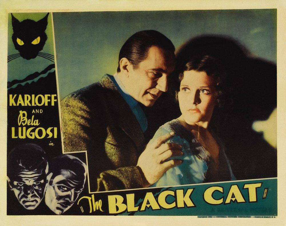 Black_Cat_3.jpg