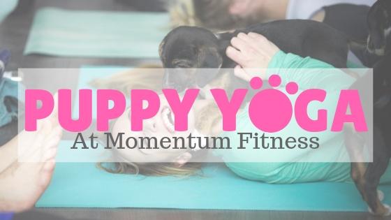 Puppy Yoga-2.jpg