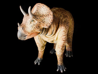Realistic  T. rex  and  Triceratops  large-scale puppets capture the imaginations of audiences in performances each week at  NMHLA