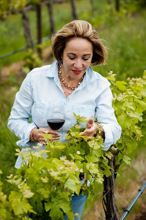 Julia in vinyard.jpg