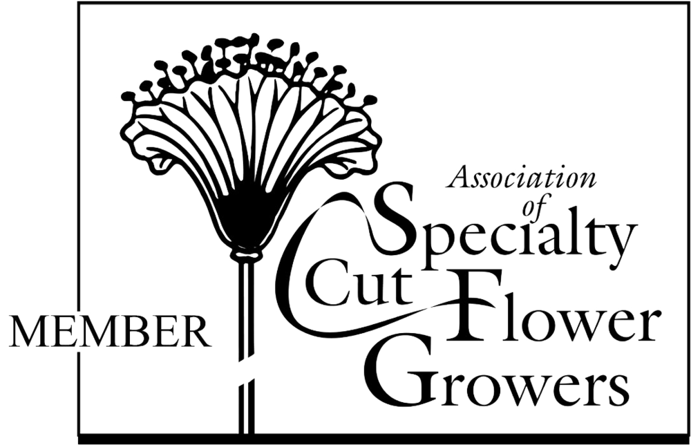 Member: Association of Specialty Cut Flower Growers