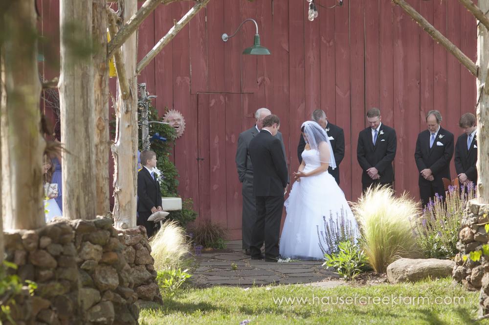 wedding-at-hauser-creek-farm-a-photo-by-ashley-0582.jpg
