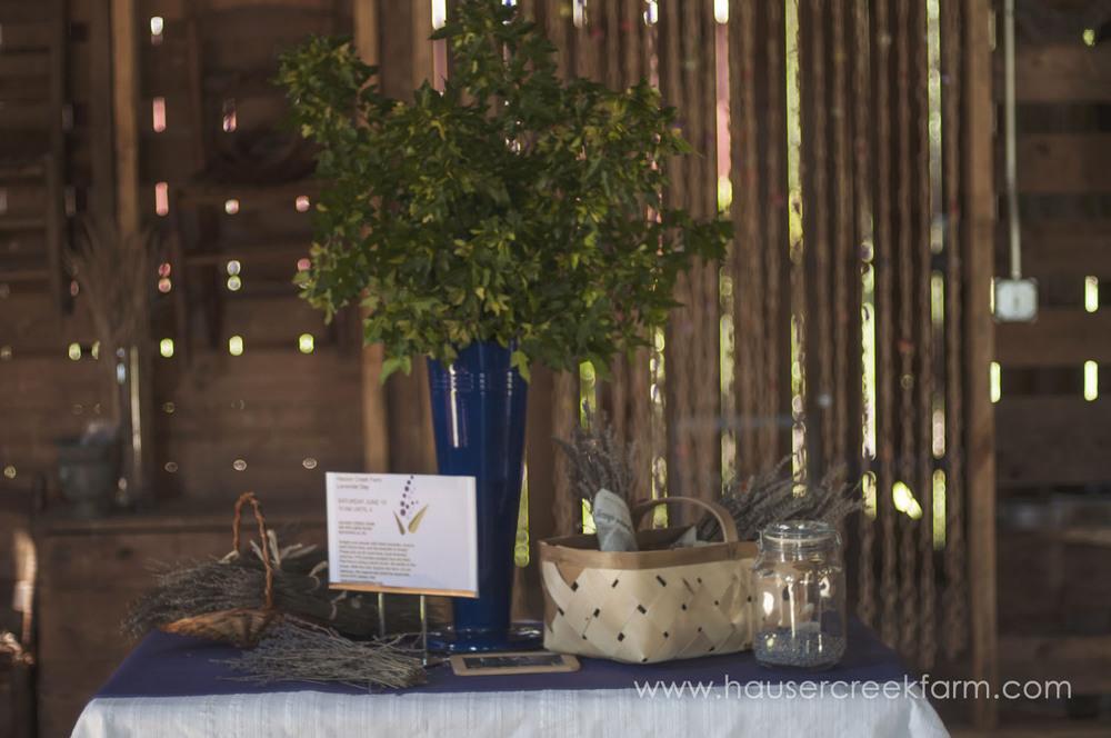 lavender-for-farm-wedding-a-photo-by-ashley-0272.jpg