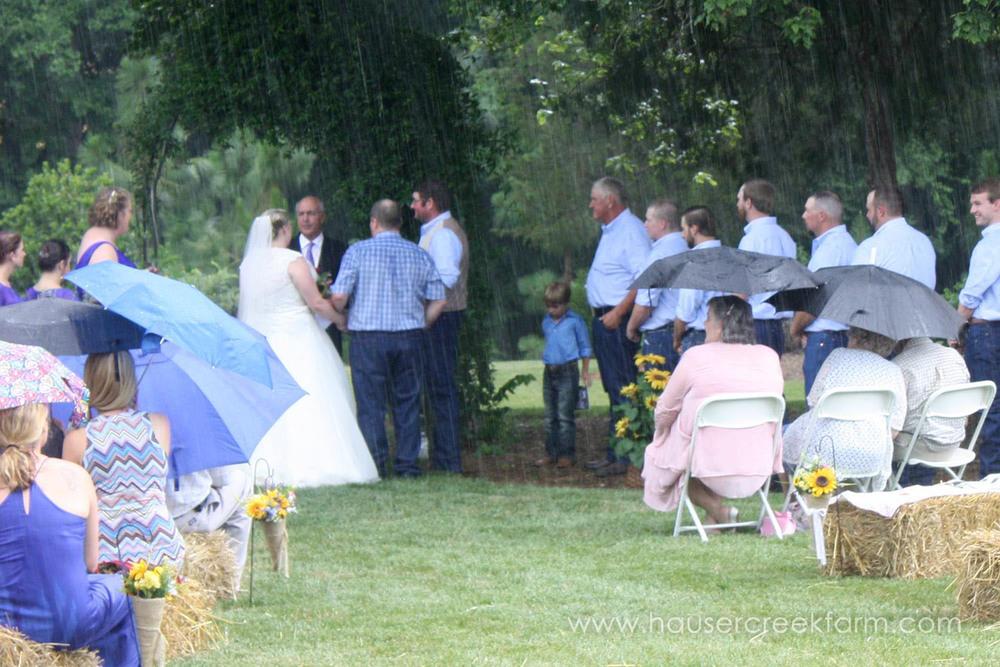 umbrellas-at-hauser-creek-farm-wedding-4477.jpg