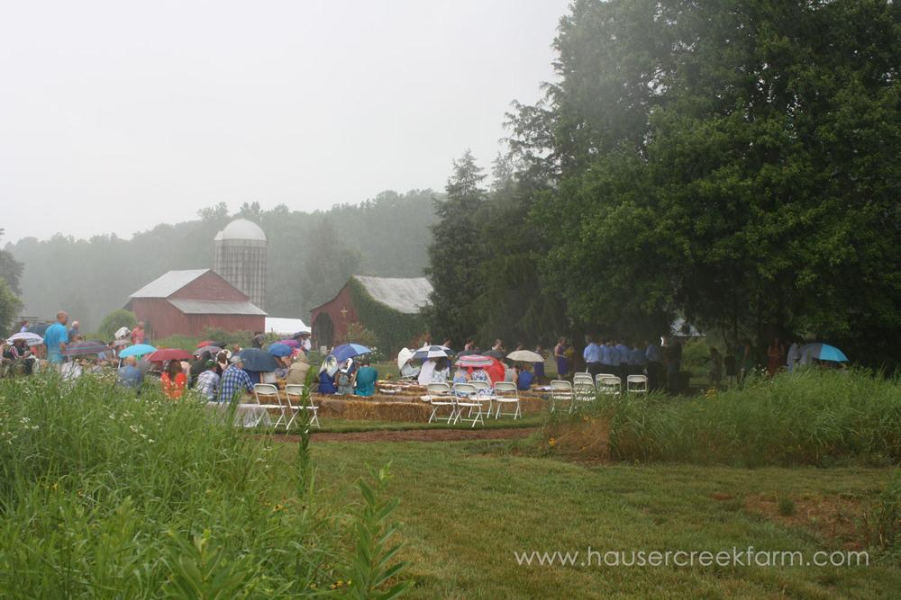 wedding-at-hauser-creek-farm-nc-4487.jpg