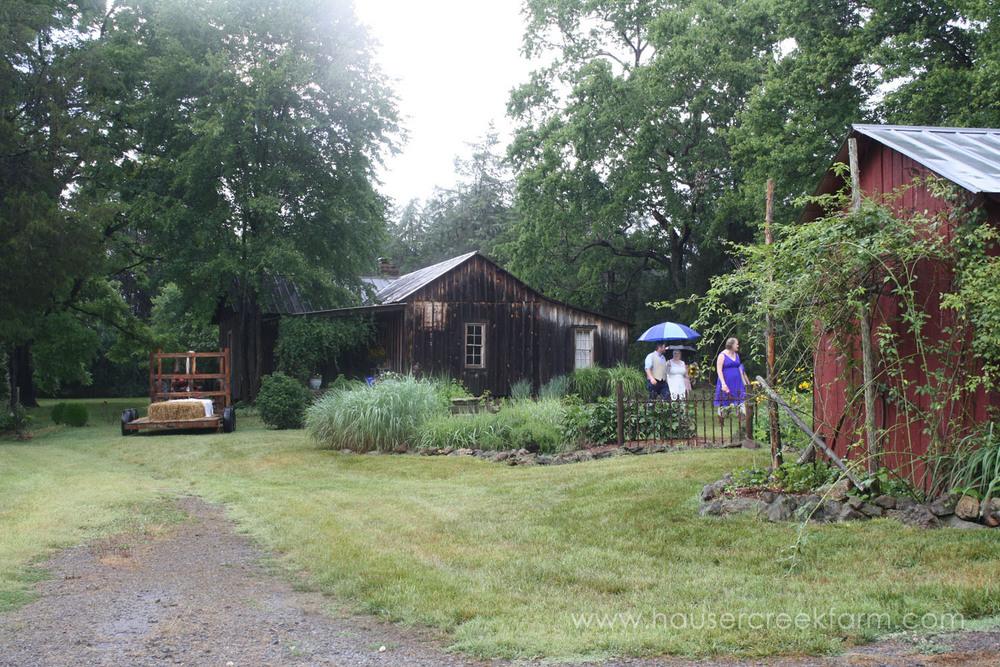 wedding-at-hauser-creek-farm-nc-4651.jpg