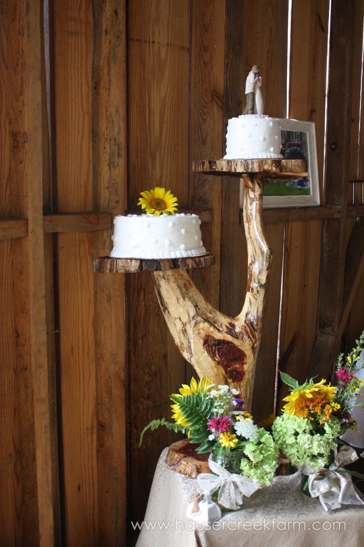wedding-at-hauser-creek-farm-nc-4662.jpg