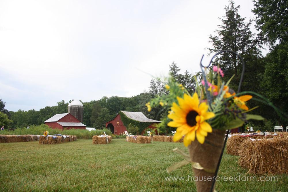 wedding-at-hauser-creek-farm-nc-4704.jpg