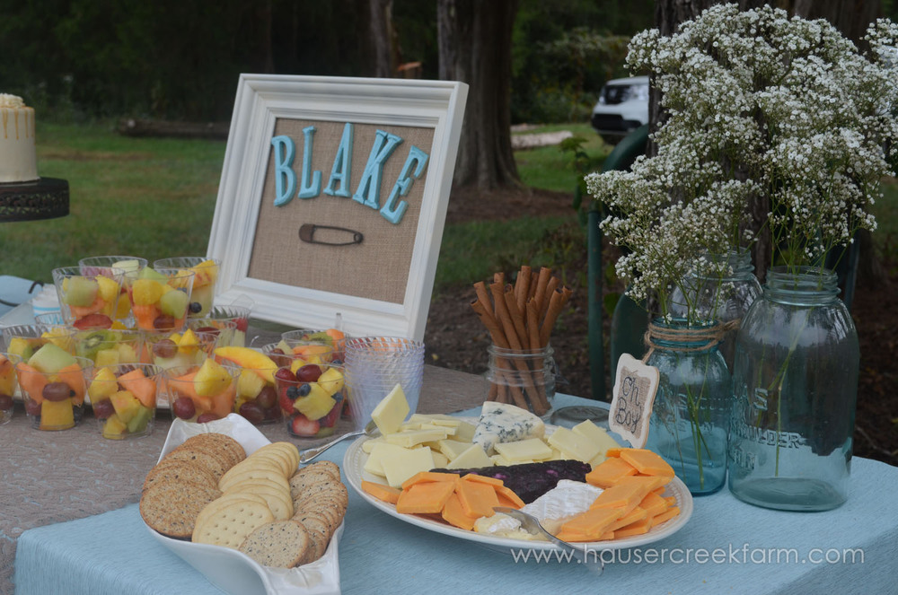 food-for-afternoon-baby-shower-hosted-at-nc-farm-039.jpg