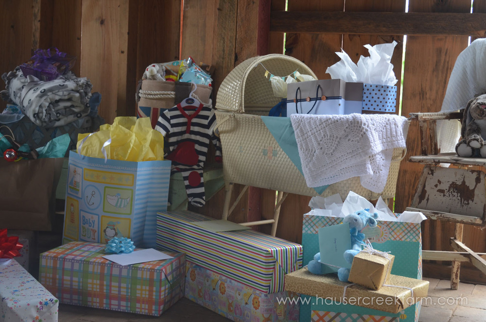 gifts-in-bassinet-at-baby-shower-for-faye-at-hauser-creek-farm-040.jpg