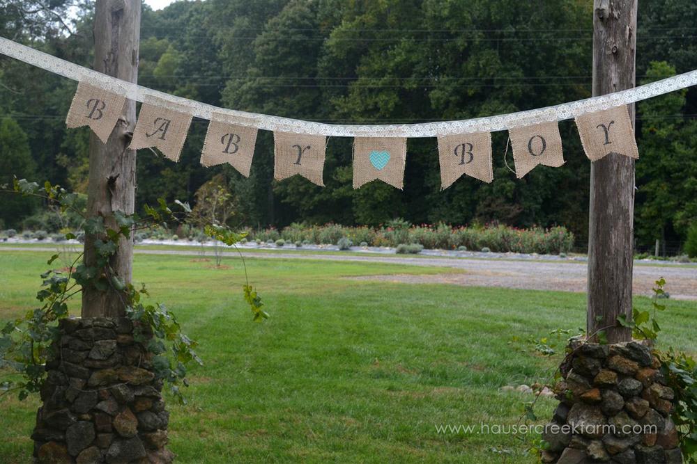 baby-boy-banner-for-baby-shower-at-hauser-creek-farm-033.jpg