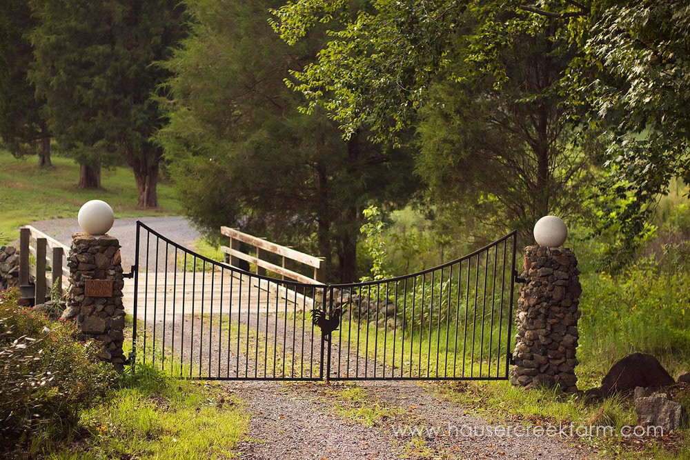 Closed iron gate at entrance to Hauser Creek Farm in Spring