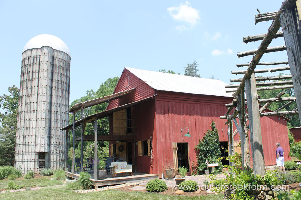hauser-creek-farm-spring-open-farm-day-melody-watson-photo-1420.jpg
