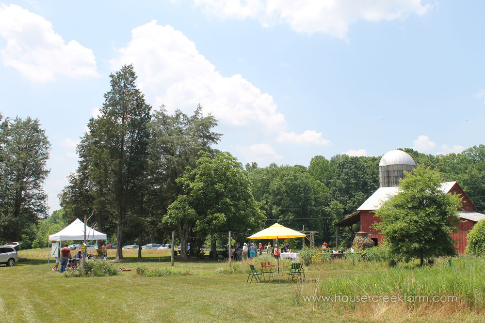 hauser-creek-farm-spring-open-farm-day-melody-watson-photo-1536.jpg