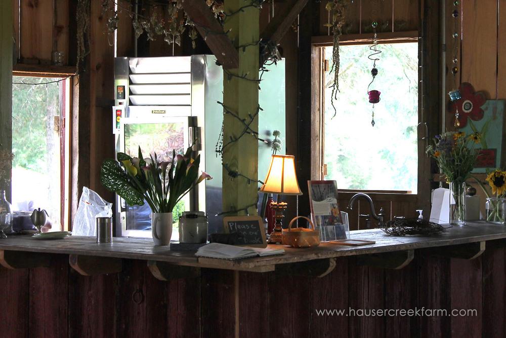 welcome-to-hauser-creek-farm-spring-open-farm-day-inside-barn-cut-flowers-1639.jpg