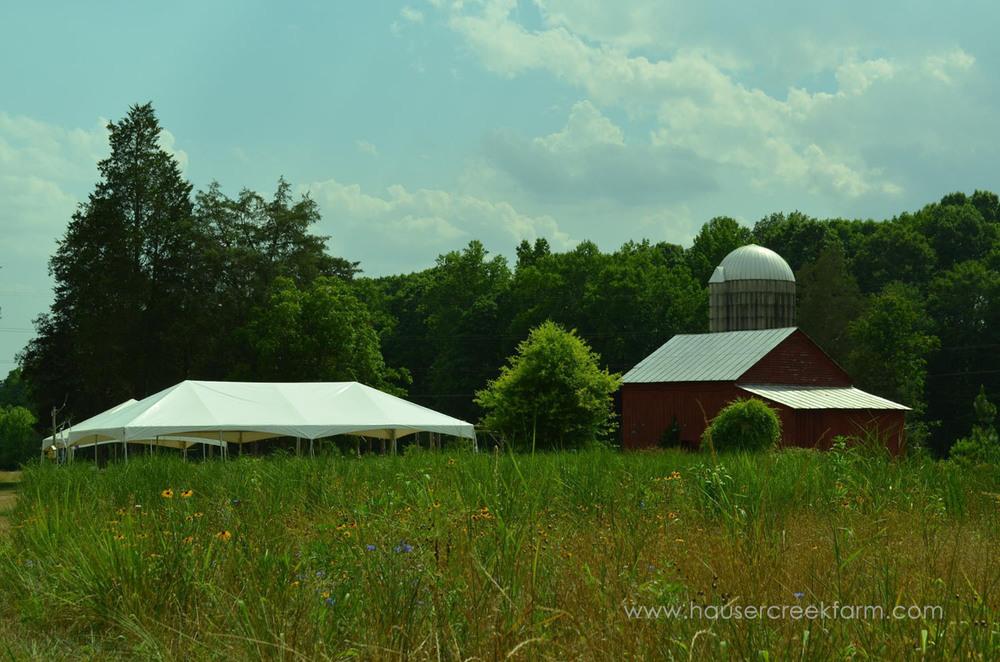 spring-open-farm-day-2015-as-seen-on-facebook-07.jpg