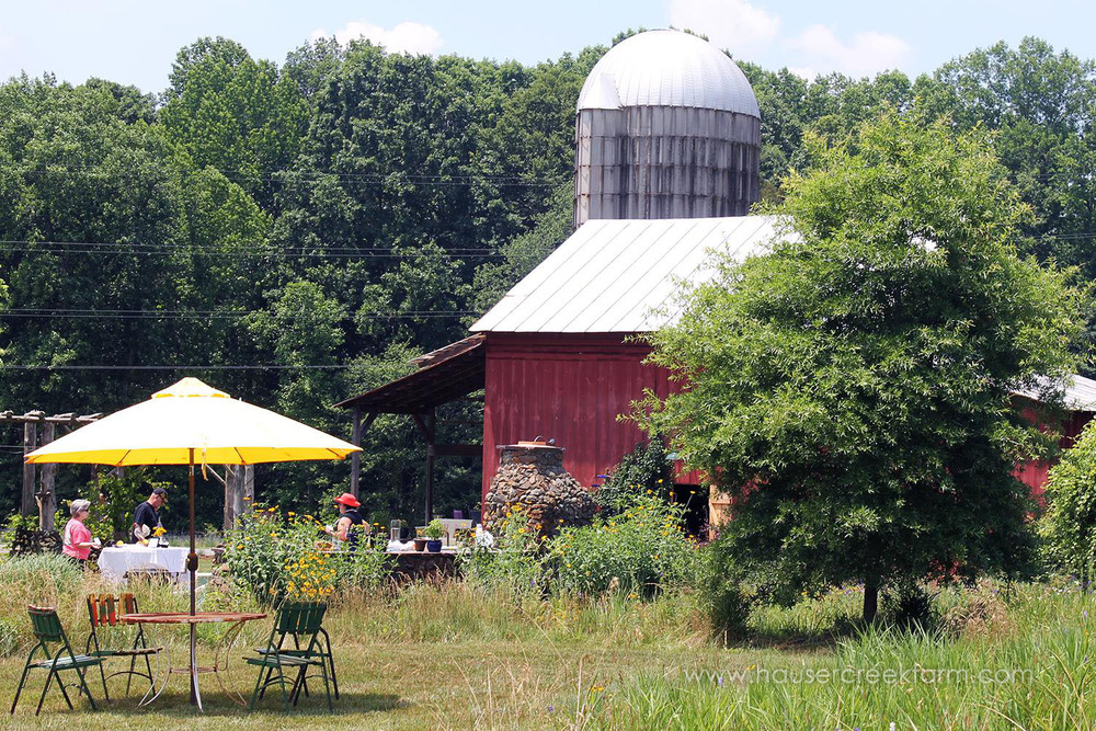 hauser-creek-farm-spring-open-farm-day-melody-watson-photo-1537.jpg