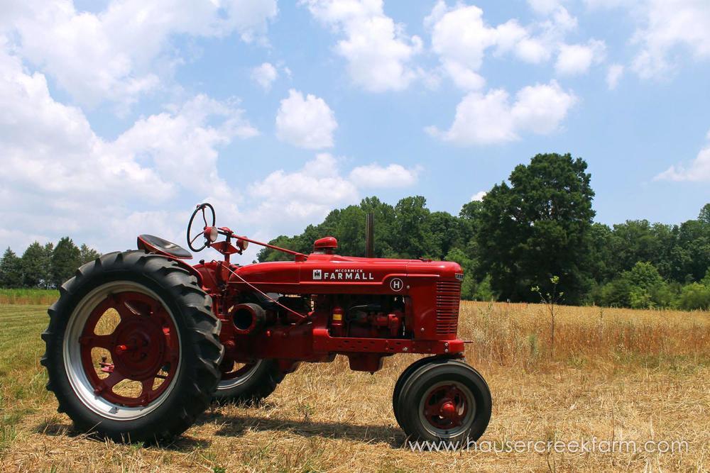 hauser-creek-farm-spring-open-farm-day-melody-watson-photo-1596.jpg