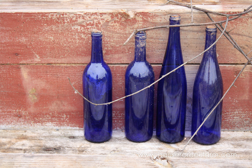row-of-four-cobalt-blue-wine-bottles-in-front-of-faded-red-barn-wall-with-twigs-IMG_8184.jpg