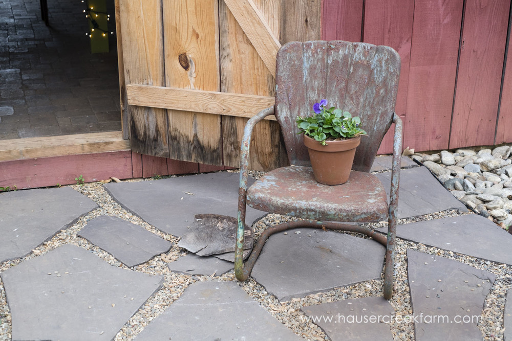 rusty-metal-chair-with-terra-cotta-pot-of-purple-pansies-on-farm-photo-by-chris-fowler-1219color.jpg