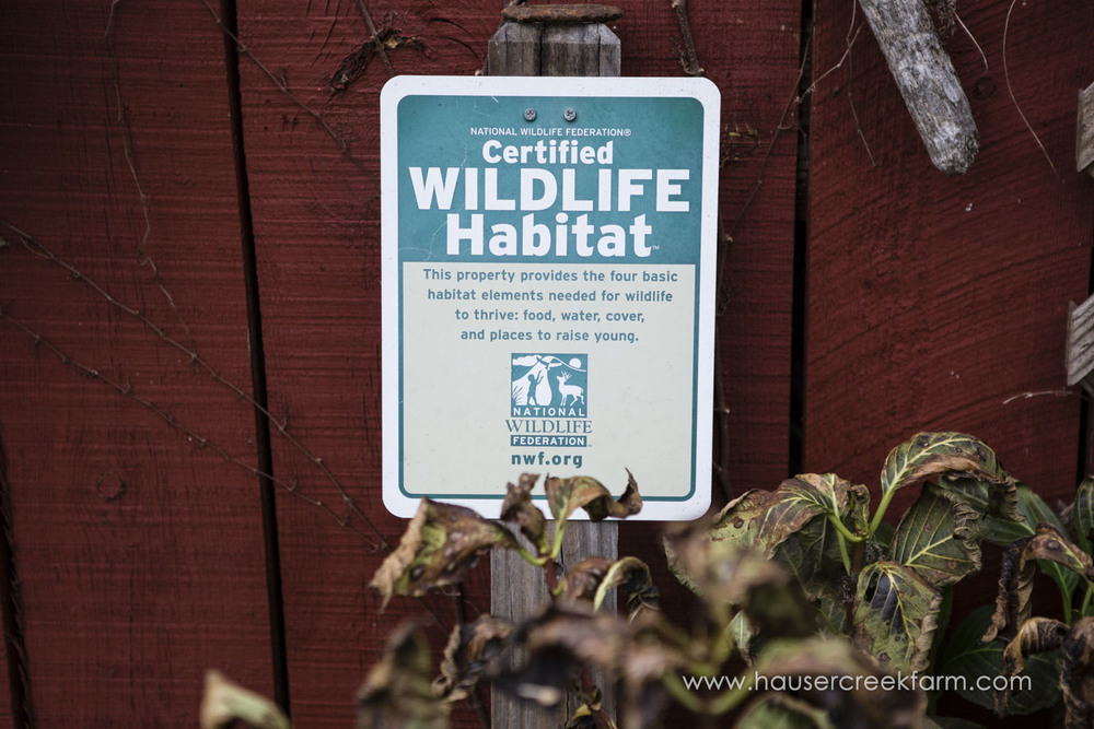 certified-wildlife-habitat-sign-with-red-painted-wall-farm-by-chris-fowler-3556color.jpg