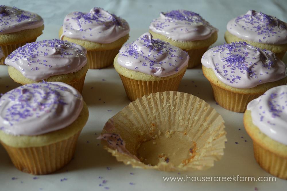 lavie cupcake.jpg