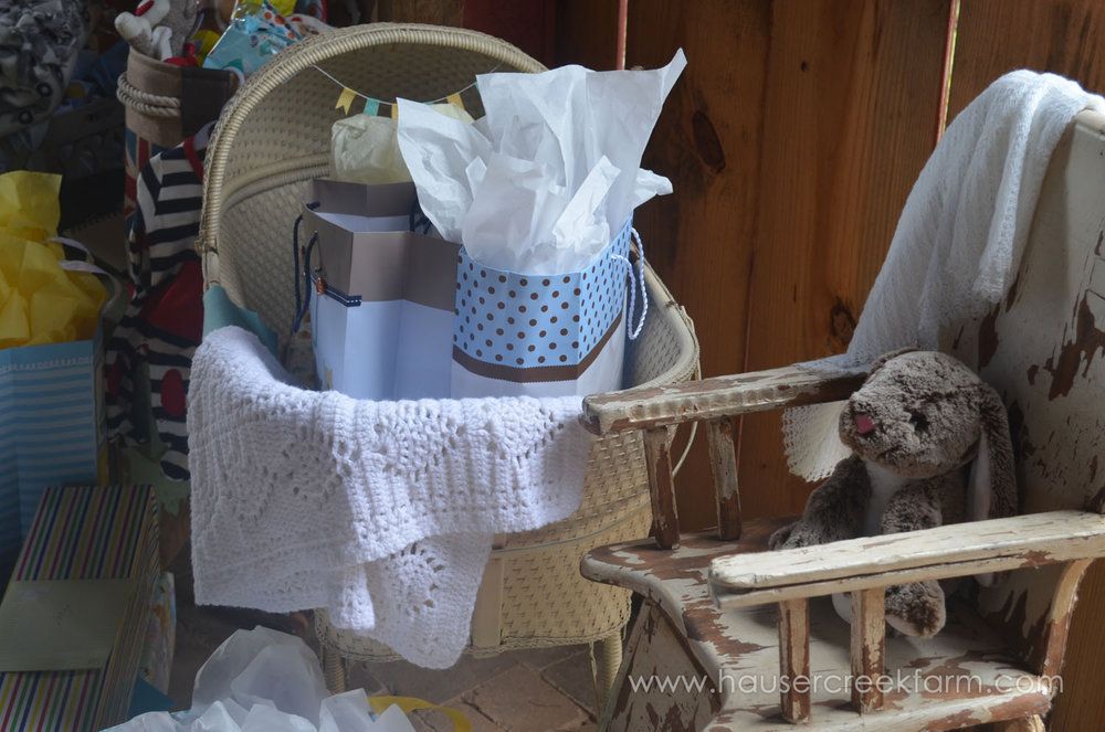 gifts-in-bassinet-at-baby-shower-for-faye-at-hauser-creek-farm-041.jpg