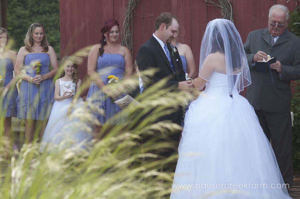 wedding-at-hauser-creek-farm-a-photo-by-ashley-0571.jpg