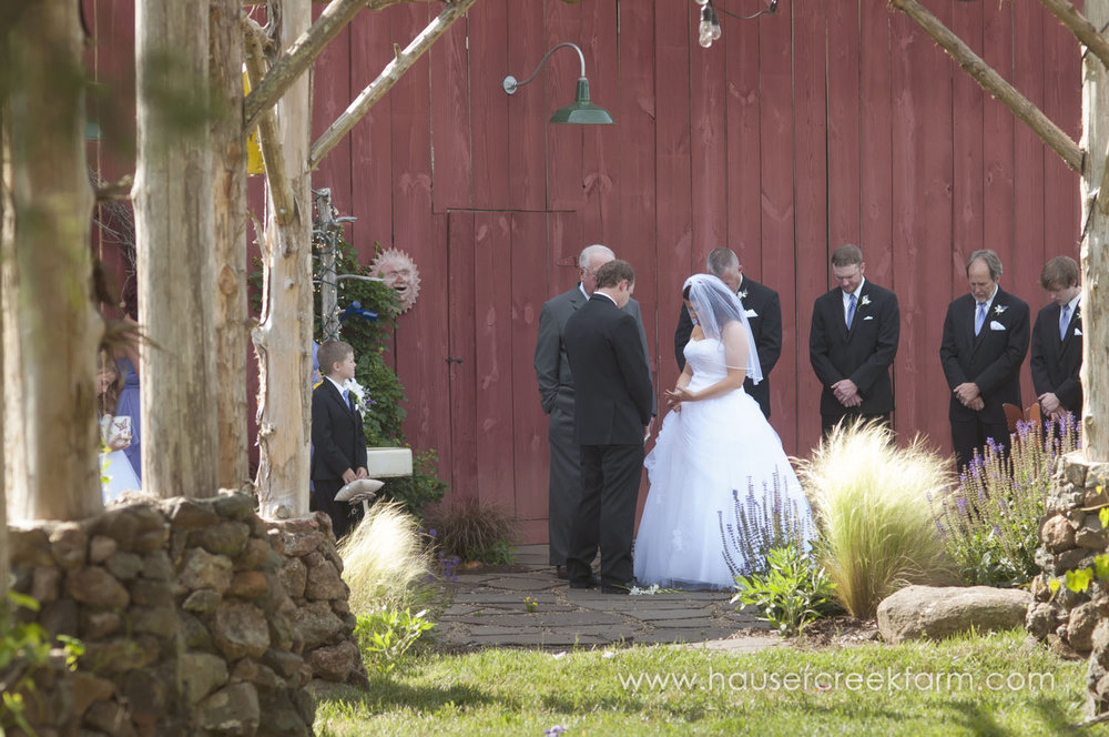 wedding-at-hauser-creek-farm-a-photo-by-ashley-0582.jpg