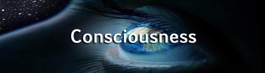 consciousness 01.jpg