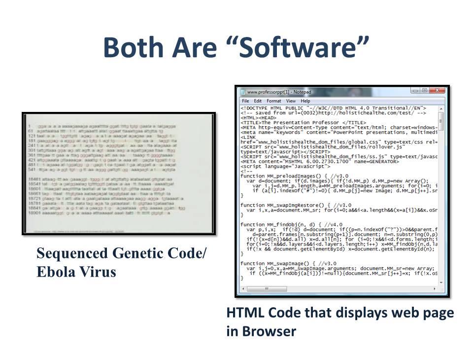 bunzelt1-comparison.jpg