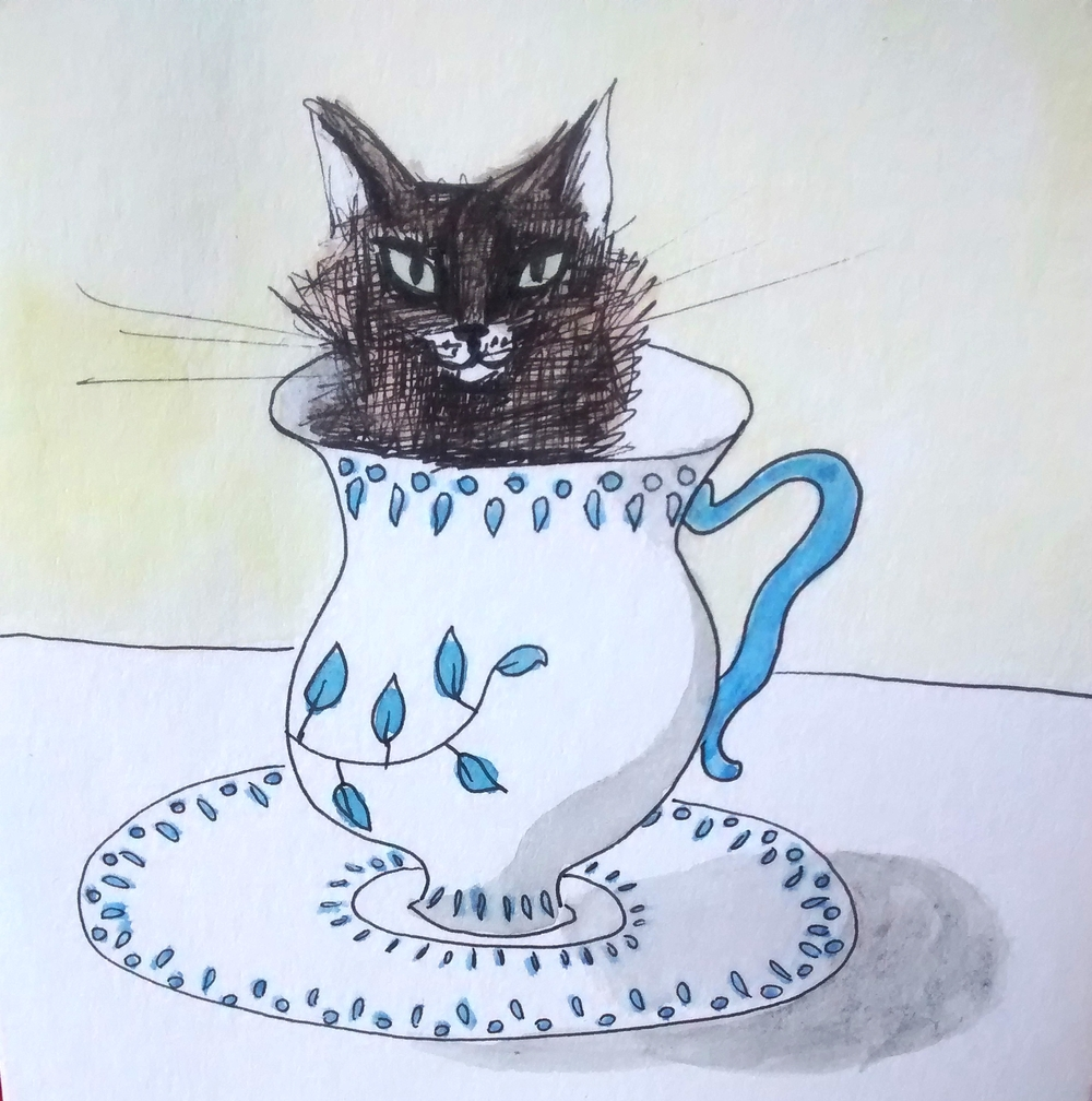 teacup kitty