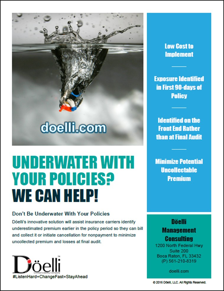 Underwater Policy 2016 Doelli Management Consulting.jpg