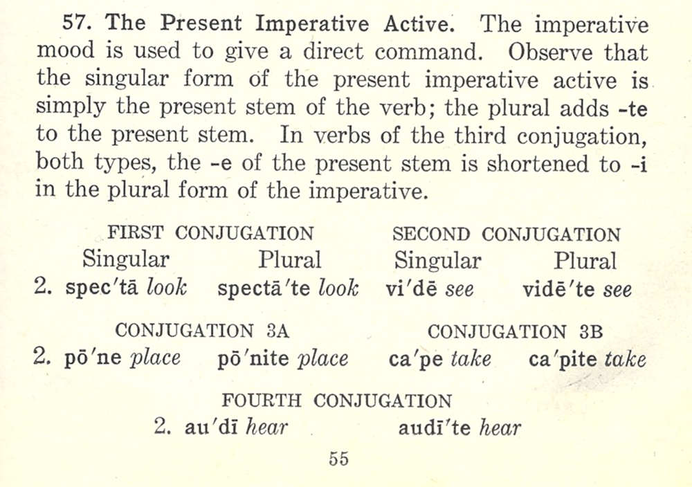 Latin I or II 2015-6 Notes on the Imperative from Mother's Book.png