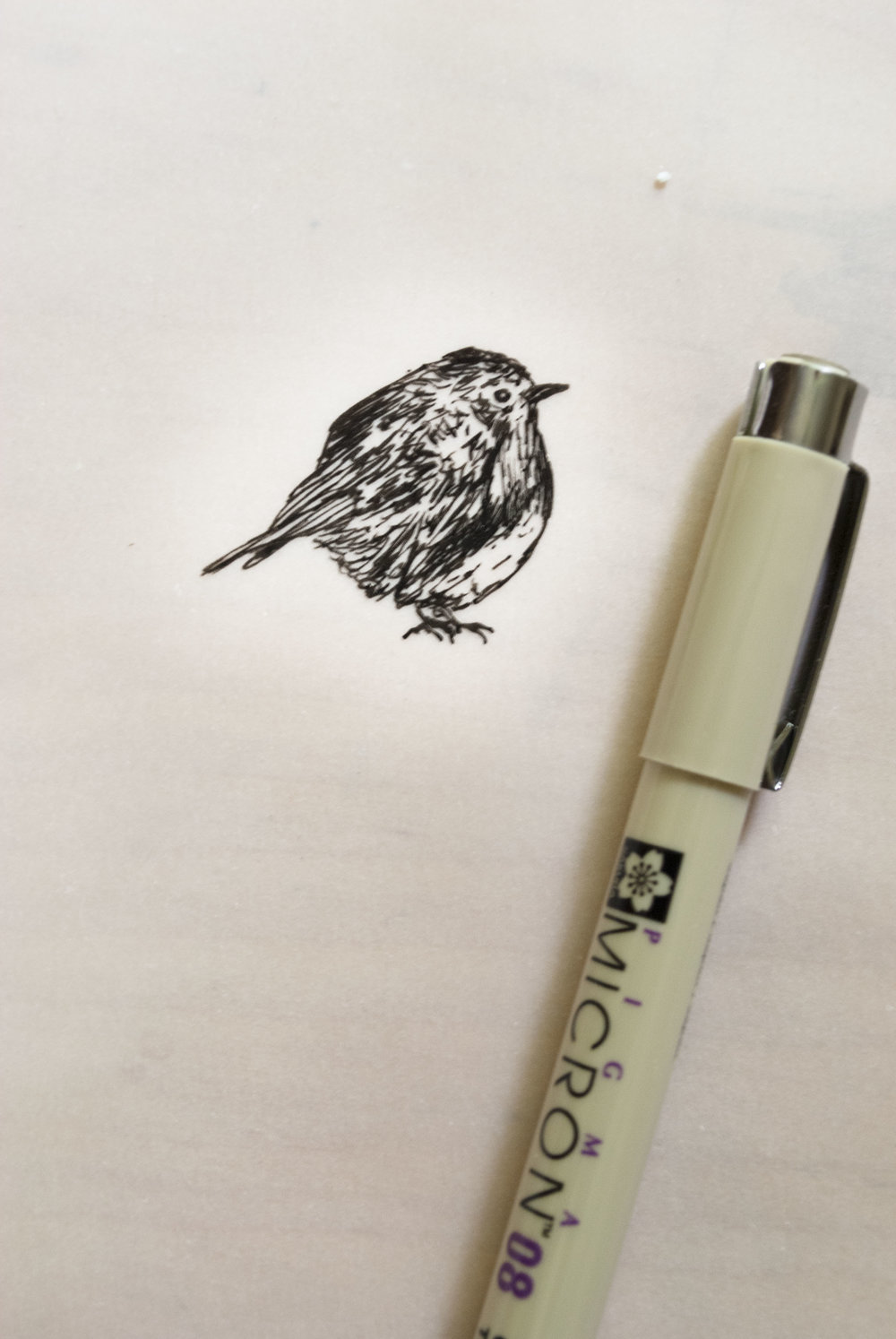 narnia bird drawing sketchbook print