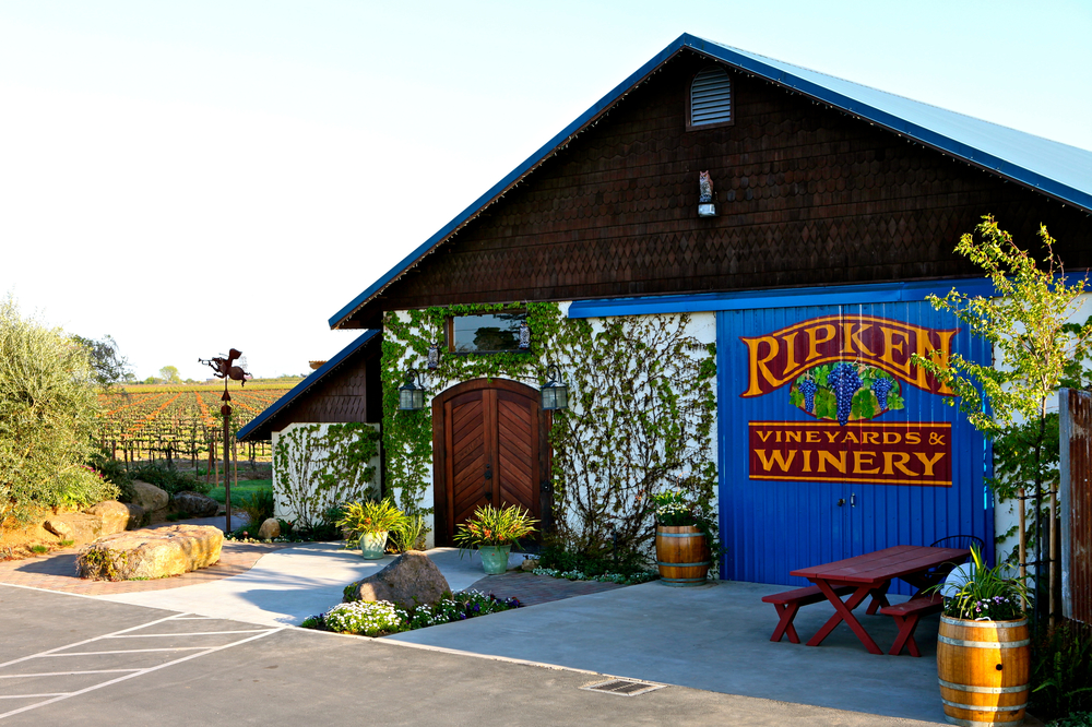 Ripken Vineyards & Winery