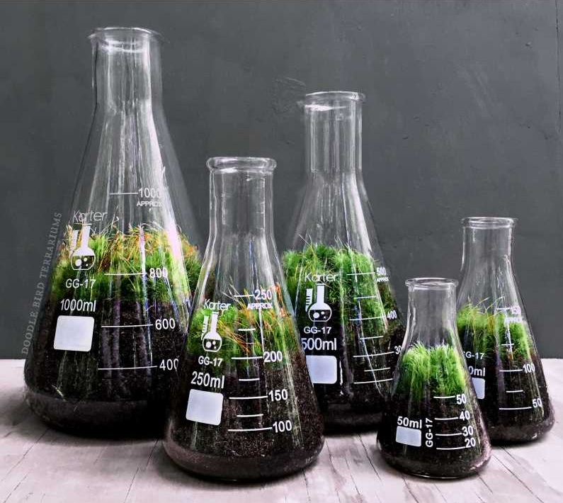 chemistry-terrarium-gift-set-glass-science-flasks