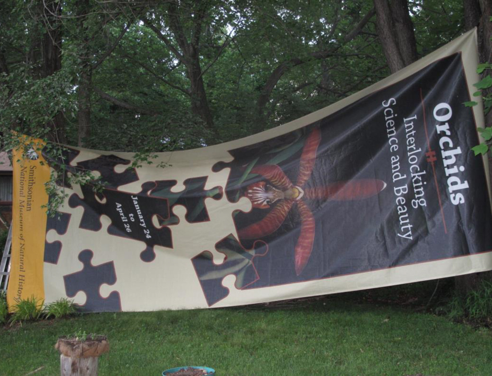 Smithsonian Institution banners