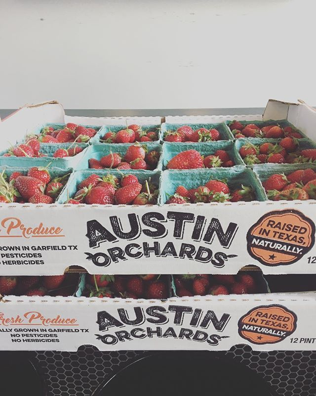 YES MA'AM PAM! First delivery of strawberries of the season from Pam @austinorchards. 🍓🍓🍓🍓🍦🍦🍦🍦