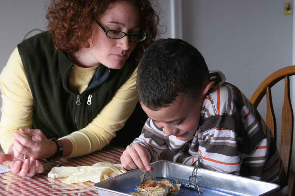 Mother helping child dissect a frog at kitchen table